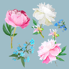 Peonies, forget-me-nots.