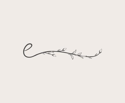 Vector Hand Drawn floral e monogram and logo