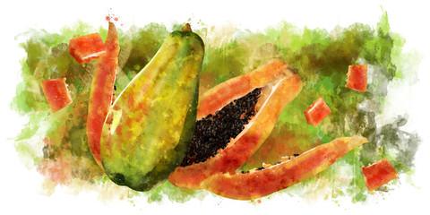 Papaya on white background. Watercolor illustration