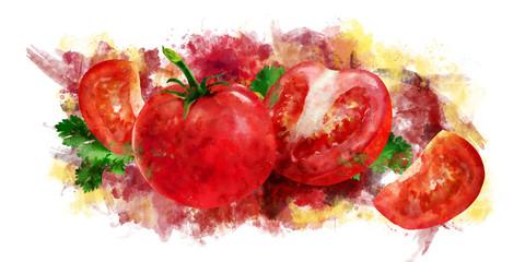 Tomato on white background. Watercolor illustration
