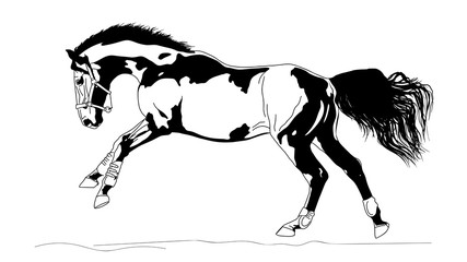 An illustration of a freely cantering horse.