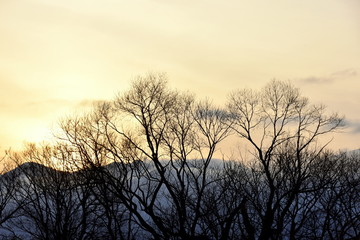 冬の安曇野の夕景