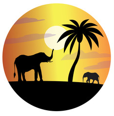 Flat vector illustration with palm tree and elephants in a circle. Black silhouette of elephants and palm trees at sunset for design.