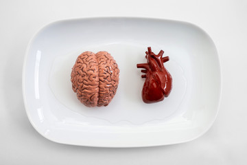 Human internal organs on white plate ready for organ transplant.