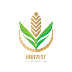 Harvest - concept business logo template vector illustration. Wheat geometric creative sign. Abstract agriculture symbol. Graphic design element.