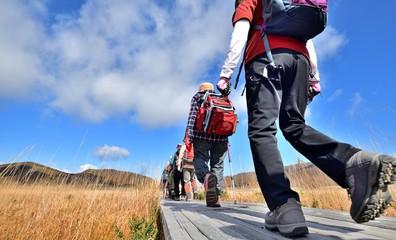 青空の高原・紅葉の草原を歩くハイカー