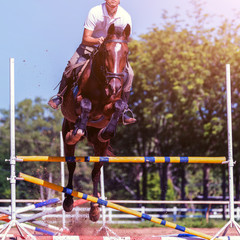 Young sportsman taking his course on show jumping competition; The horse jumps over the barricade; Equestrian Sports,  Horse Riding