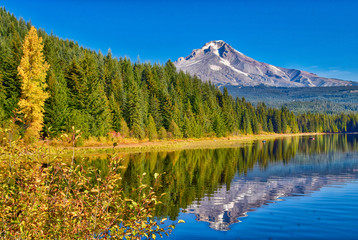 Mt Hood is reflecting in Trillium Lake