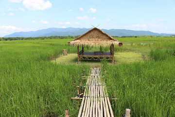 Traditional oriental style bamboo hut set in the middle of a rice field with view of distant mountains and blue sky, Chanthaburi province, Thailand.