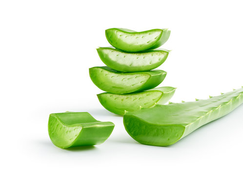 Aloe Vera sliced isolated on white background - clipping path included