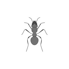 ant colored outline icon. One of the collection icons for websites, web design, mobile app