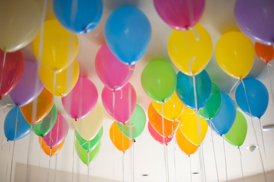 Colorful Balloons Filled With Helium Float On The Ceiling