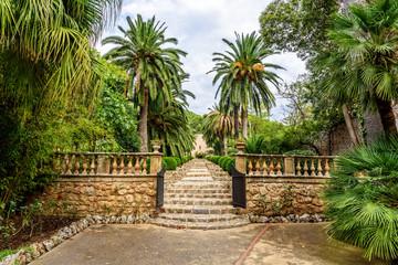 Jardi  Botanic de Soller Botanische Garten Mittelmeerflora