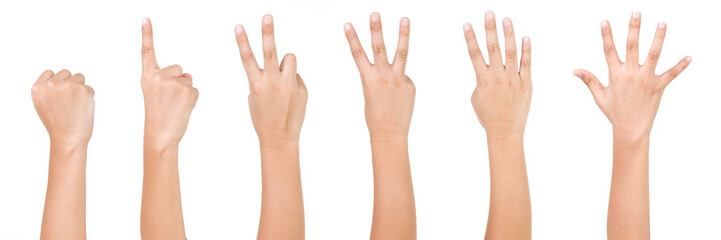 Kid Hand Isolated on White Background  : Hand Counts from Zero to Five.