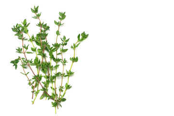 Thyme bunch isolated on white background close up