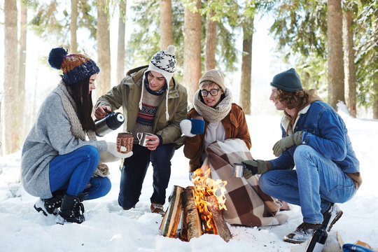 Full length portrait of four young people camping in winter forest sitting in circle round fire and drinking hot cocoa