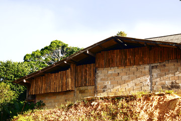 Local House in forest on mountain at countryside in Thailand