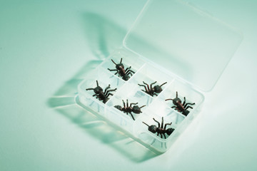 Artificial Ants in Plastic Container