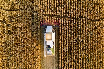 Fall farming works