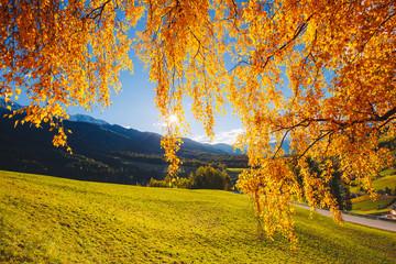 Wall Mural - Magic image of sunny hills in Santa Magdalena village. Funes valley, Dolomite Alps.