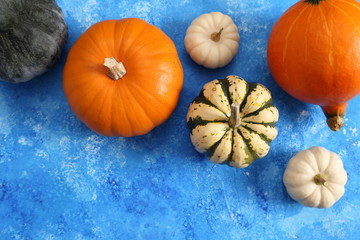 Colorful pumpkins.