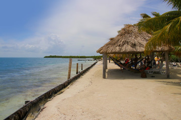Belize, Beach, Palme, Hammock, People