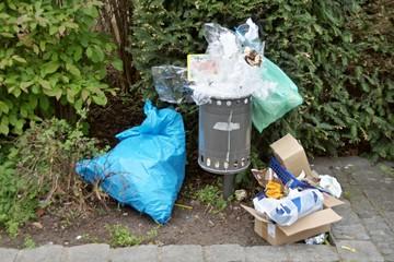 Umweltfrevel am Mülleimer