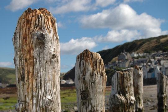 Wooden posts on beach in Gardenstown, Scotland
