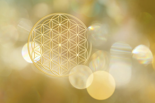 Blume des Lebens in goldenem Licht
