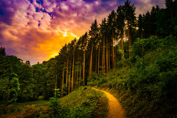 Beautiful landscape with pathway in the mountains forest at sunset. Hiking path in breathtaking panoramic view, inspirational summer landscape in forest. Walking footpath or biking path, dirt road.