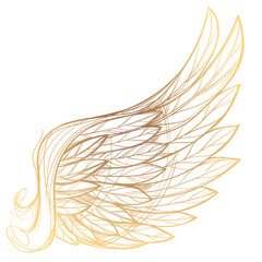 Vector illustration of golden wing, isolated on white background. Design element for emblem, sign, vintage style posters and more.