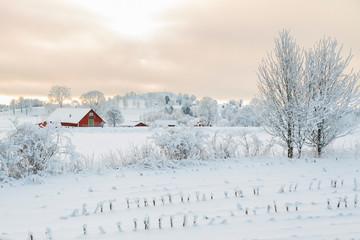 Rural winter landscape with a farm