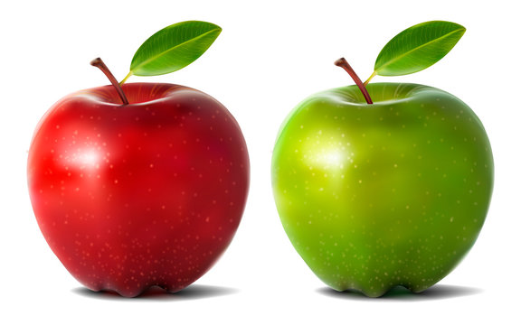 Realistic apples isolated on white background. Vector illustration