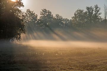 Jesienny świt nad wiejskimi łąkami. - fototapety na wymiar