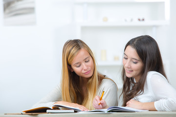 Teenage girls doing their homework