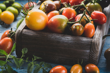 Fresh tomatoes mix in wooden crate