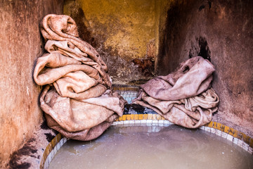 Processiong raw leather at Tanneries of Fez, Morocco in Africa