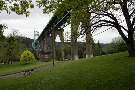 Cathedral Park in Portland, Oregon under the St Johns Bridge on an overcast day.