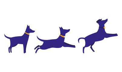 dogs icon image