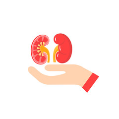 Kidney care vector concept