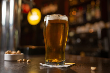 Enjoy a pint glass of golden beer with snacks in a bar