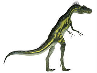 Deltadromeus Dinosaur Tail