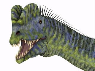 Dilophosaurus Dinosaur Head