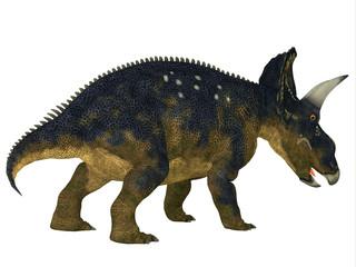 Nedoceratops Dinosaur Tail