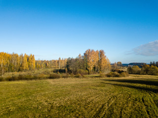drone image. aerial view of rural area with fields and forests in autum