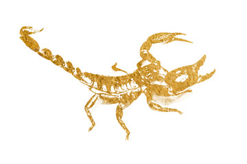 Gold scorpion. Abstract gold stroke with paint brush on white background