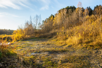 Bushes, trees and old dry grass on the downhill near river