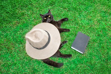 A black cat is lying on the green grass under his hat and a book.