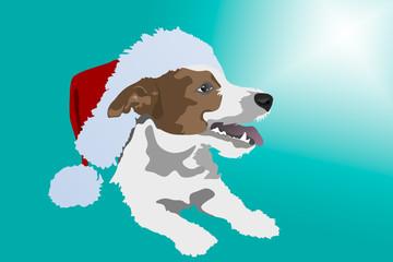 Jack Russell in Santa's hat
