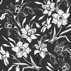 Monochrome floral seamless pattern with hand drawn flowers daffodils, narcissus.